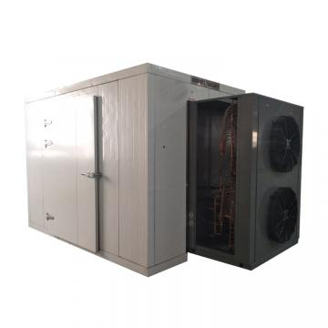 Dryer Industrial Vacuum Dryer for Fruit and Vegetable