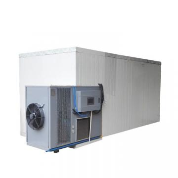 Guangzhou Heat Pump Food Fruit Vegetable Dehydrator/ Dryer Fruit Machine Industrial Dryer