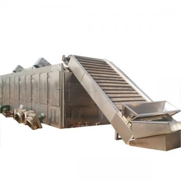 Multi-Layer Mesh Belt Dryer for Seafood