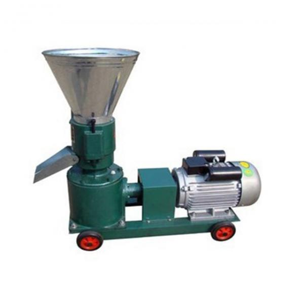 Fish Pellet Machine Floating Fish Feed Processing Line #1 image