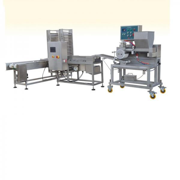 Aluminum Foil Patty Pans Foils Round Foil Dishes Making Machine From Silverengineer #1 image