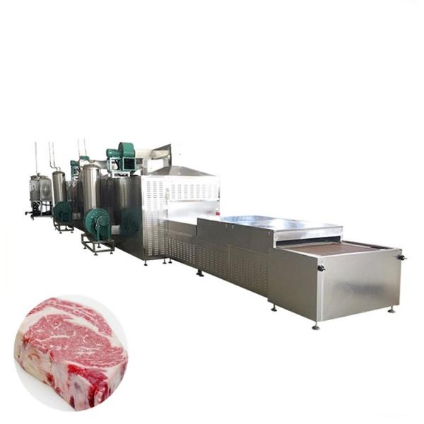 Industrial Microwave Frozen Meat Blocks Thawing Machine, Seafood Defrosting Machine #1 image