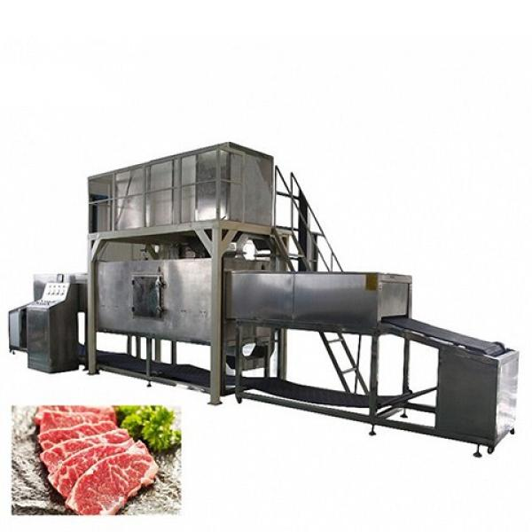 Tunnel - Belt Corn Grains Beans Curing Drying and Sterilization Machine #1 image